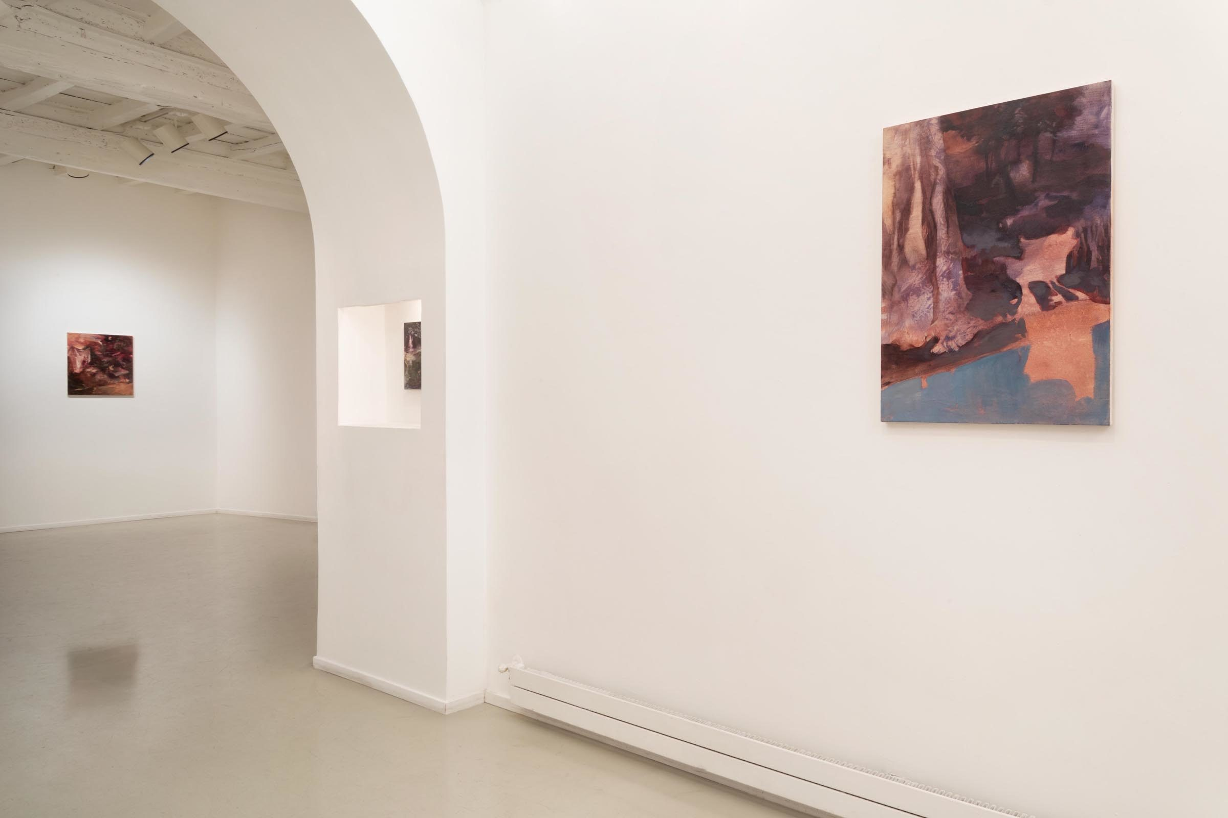 Alice Faloretti, Suspension of Disbelief, installation view, Francesca Antonini Artecontemporanea, Roma, ph. D. Molajoli