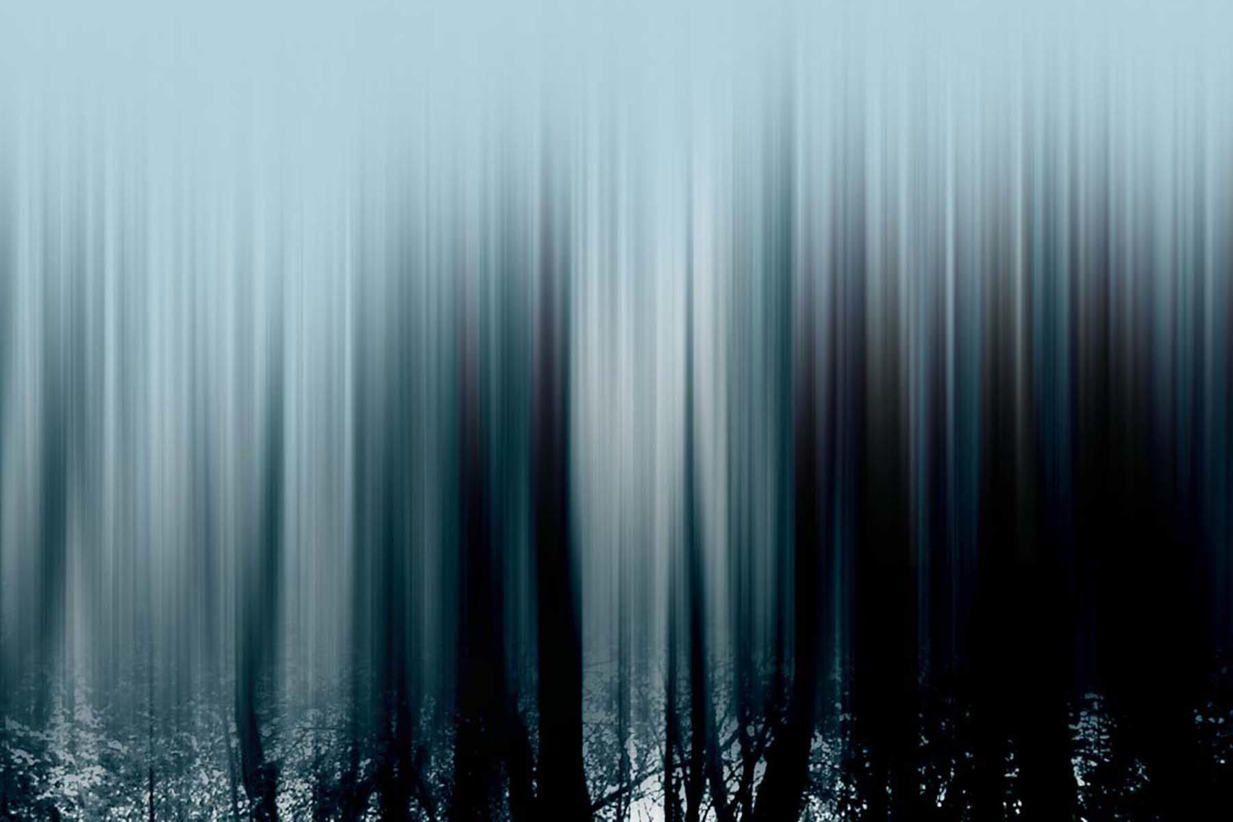 G. Dell'Antonia, I miei infiniti alberi (San Rocco), print on paper, 50 x 76 cm