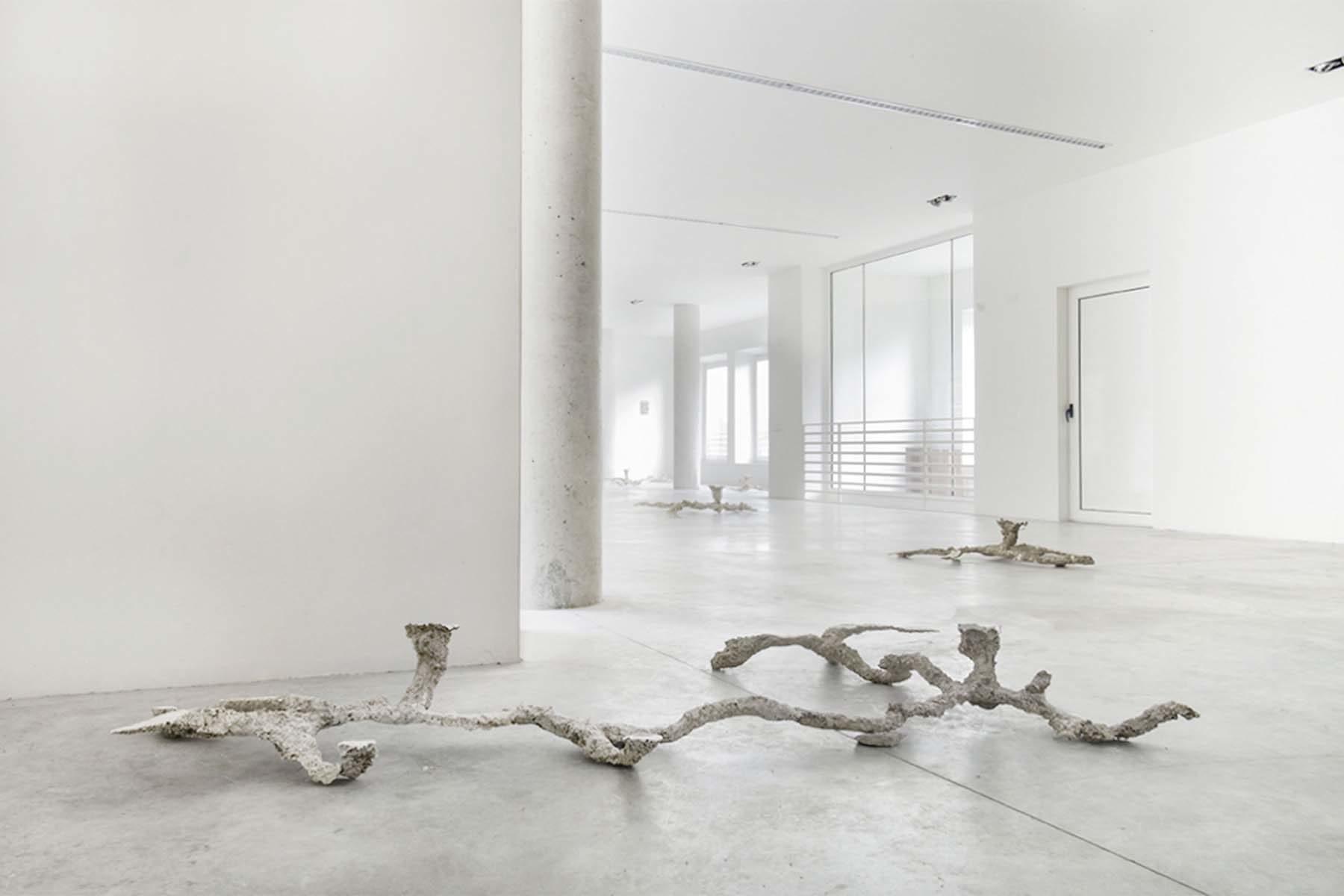 Sentieri non-euclidei, installation view, Nuovo Spazio di Casso, Dolomiti Contemporanee