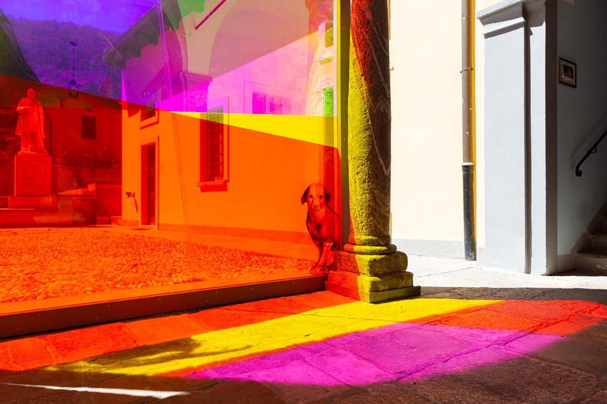 Pensando a Gaudenzio, 2021, installazione site-specific, pvc, legno, pellicole adesive, stampa digitale, cm 387 x 283 x 8, foto Marta Carenzi