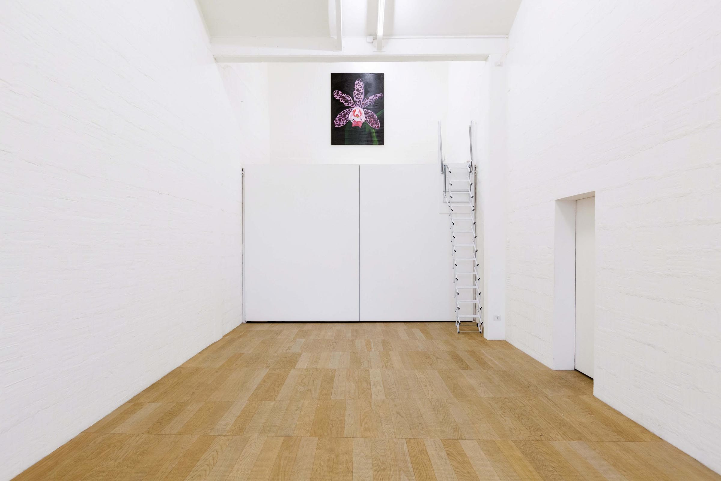 Matteo Attruia, A Flower for Piet, show view, Galleria MDL, Venice, ph. N. Covre