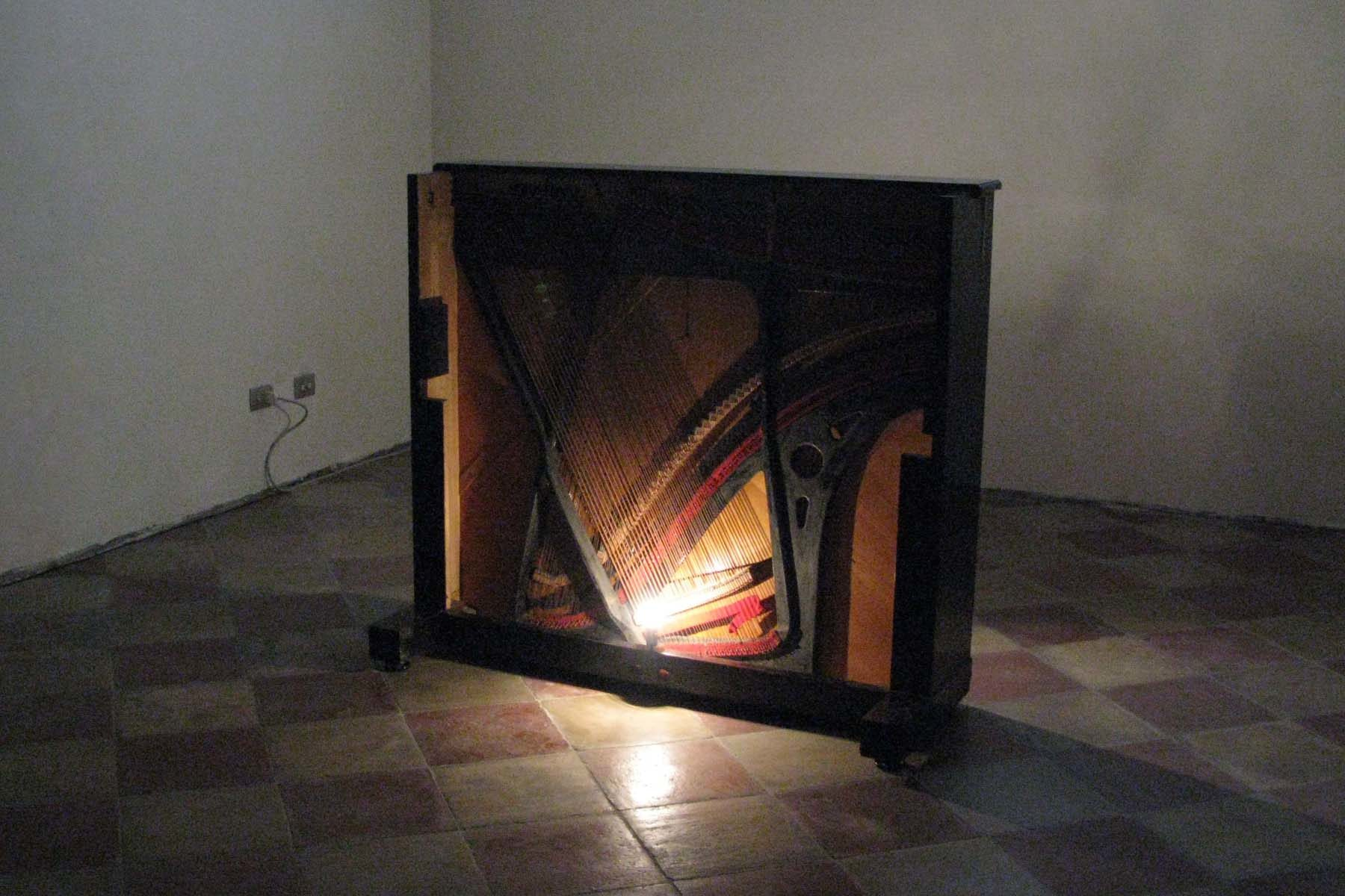 Jacopo Mazzonelli, Organico, 2010, mixed media, installation view