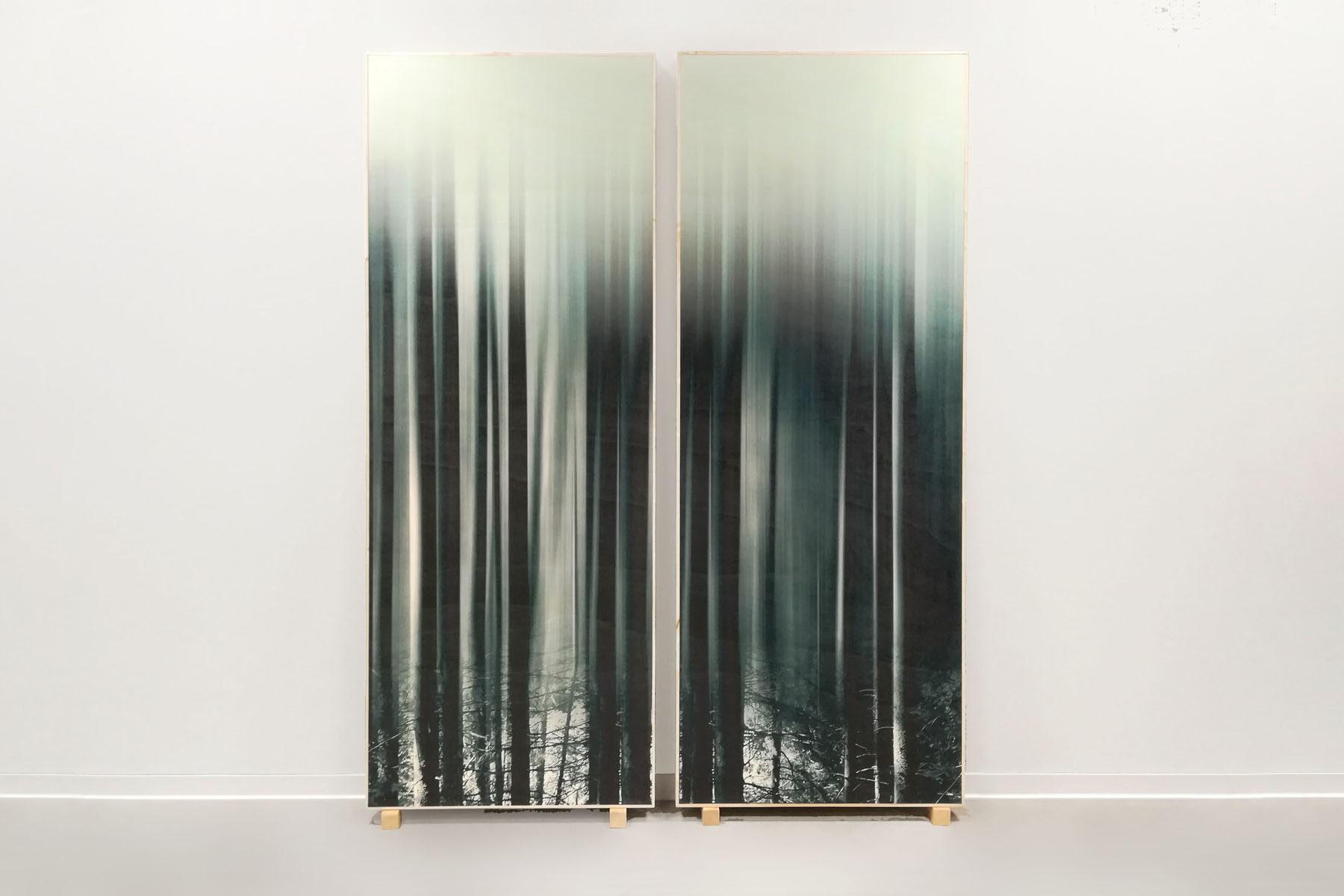 G. Dell'Antonia, I miei infiniti alberi, 2017, installation view