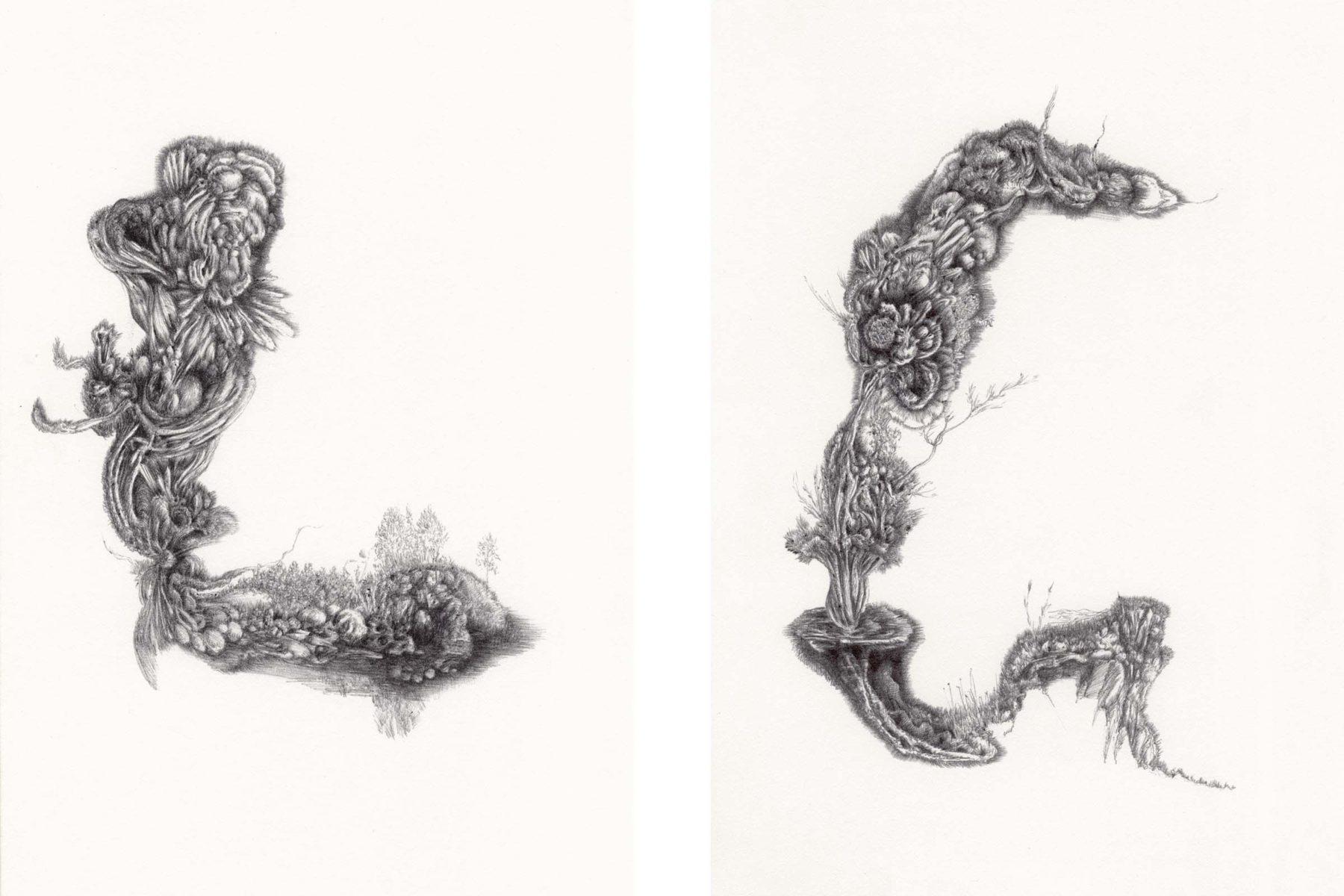 Carlos Ceci, Disegno non titolato #1, 2012, pencil on paper, 26 x 18 each