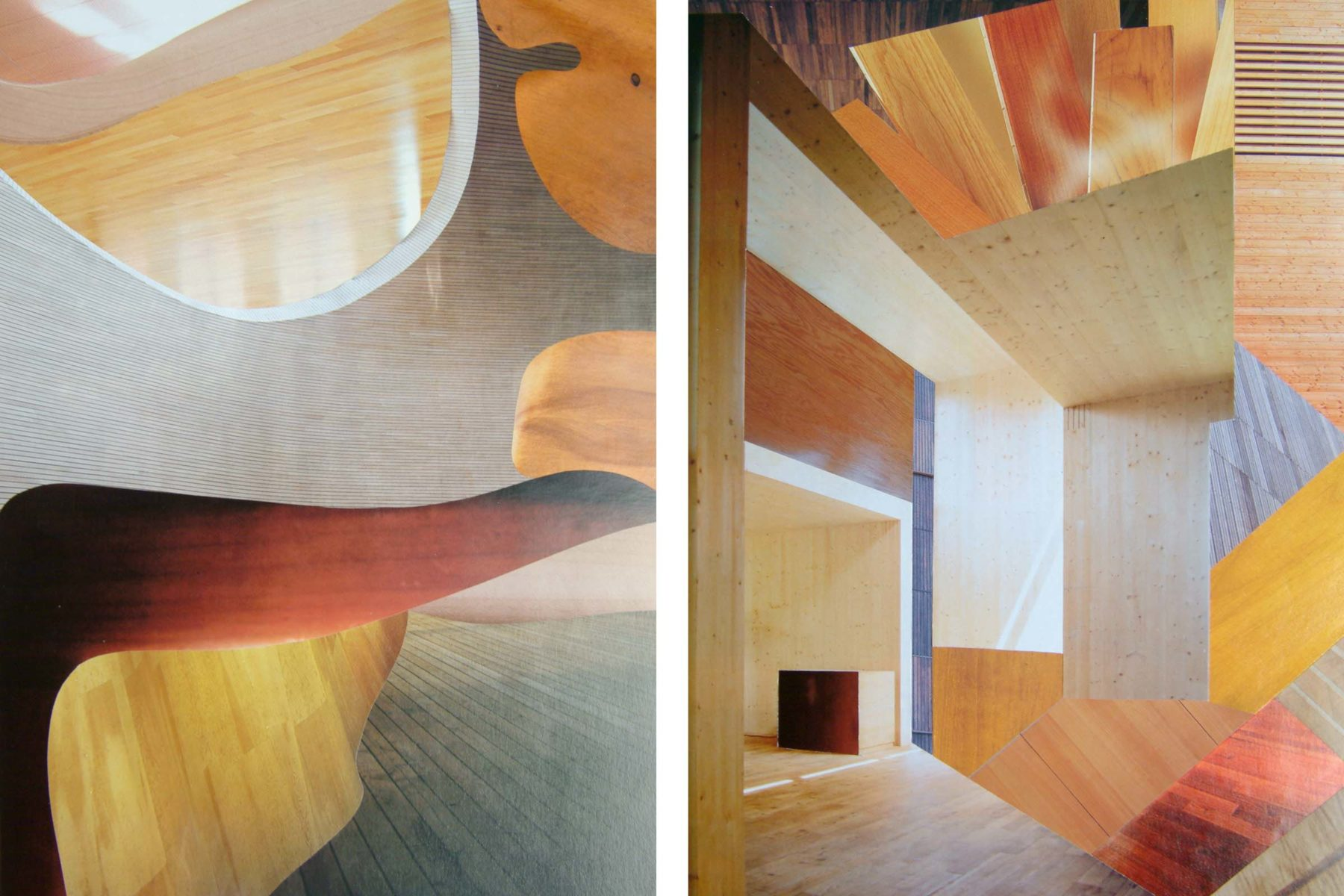 Devis Venturelli, Eidotipo (L47, L102), 2012, collage on paper, 30 x 20 cm each