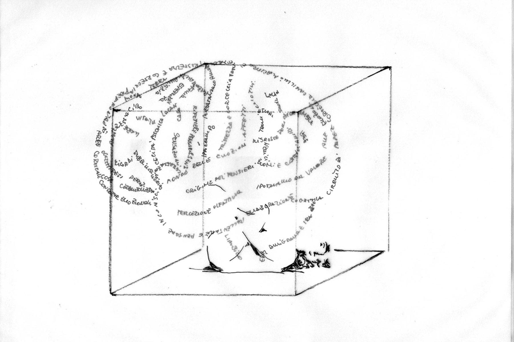 Elena Arzuffi, Il linguaggio segreto del corpo, 2012, drawing on paper, 50 x 70 cm
