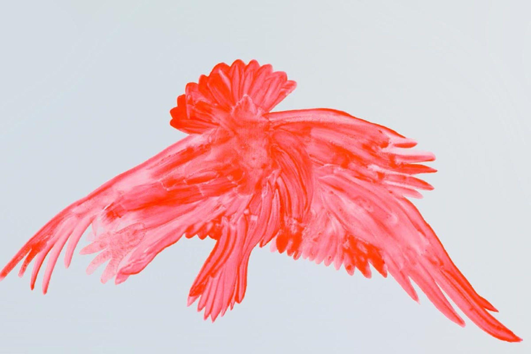 F. Lanaro, An eagle has not flag, 2013, acrylic on canvas, 80 x 100 cm