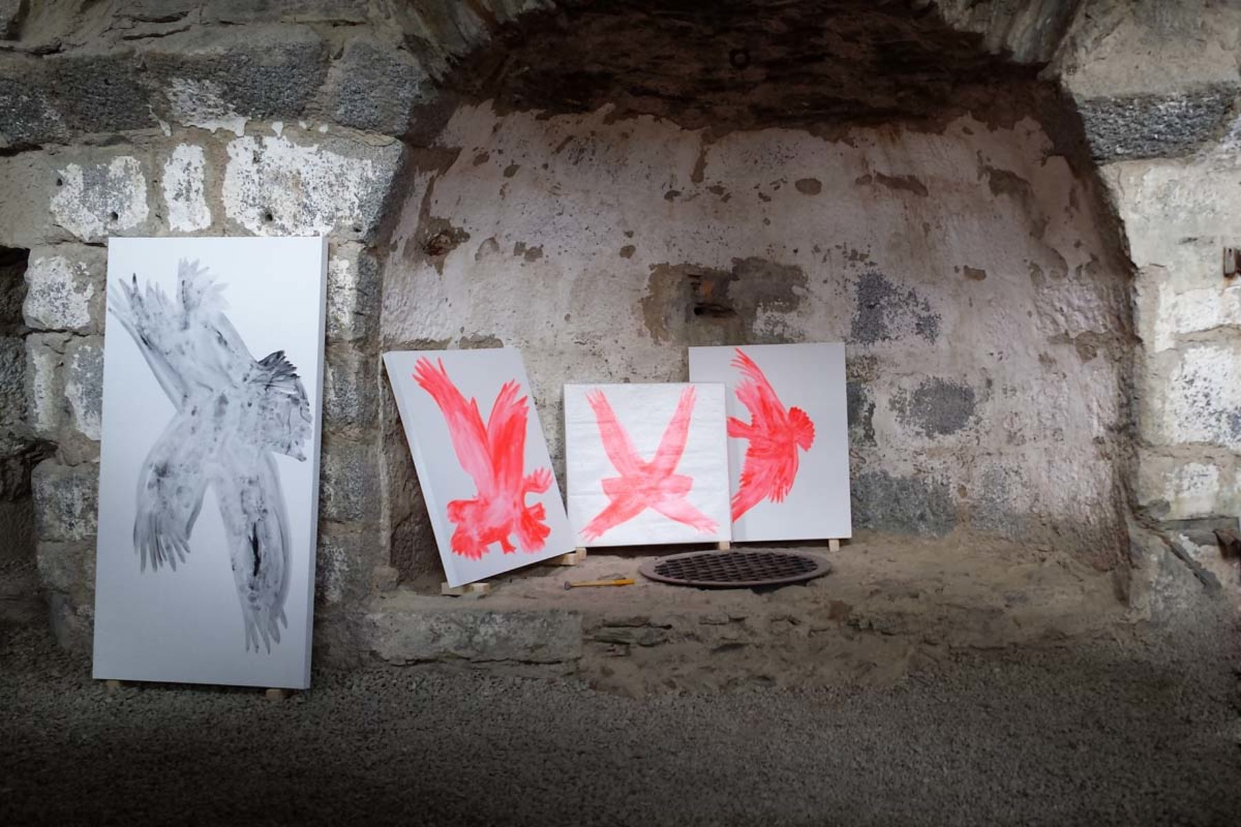 F. Lanaro, An eagle has not flag, 2013, installation view