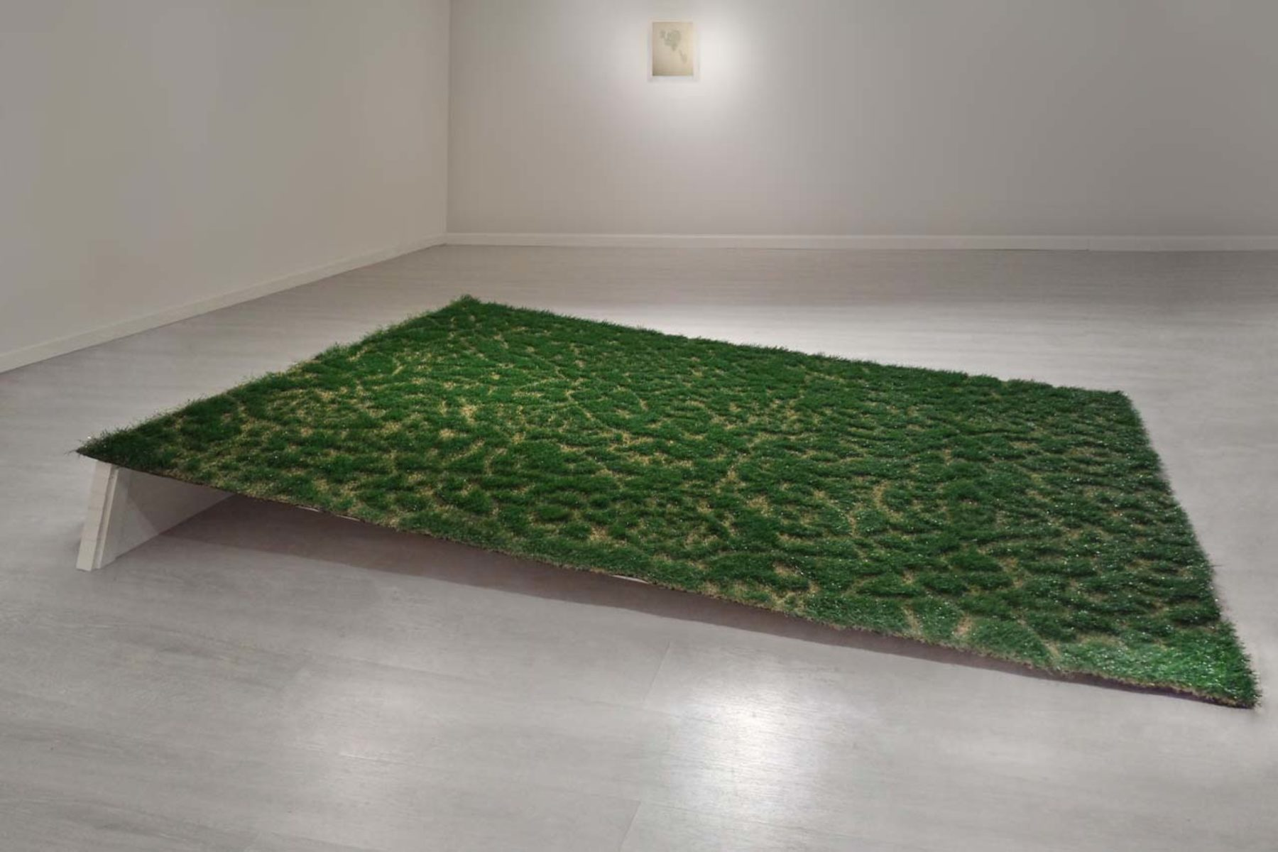 Laura Pozzar, Keep off the grass (carpet), 2013, cutted artificial grass, 230 x 200 cm