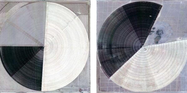 Marco Cadioli, Square with concentric circles (#22, #48), 2013, digital print on paper, 30 x 30 cm each