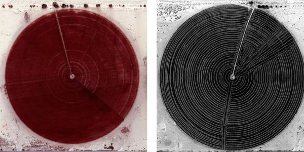 Marco Cadioli, Square with concentric circles (#64, #65), 2013, digital print on paper, 60 x 60 cm each