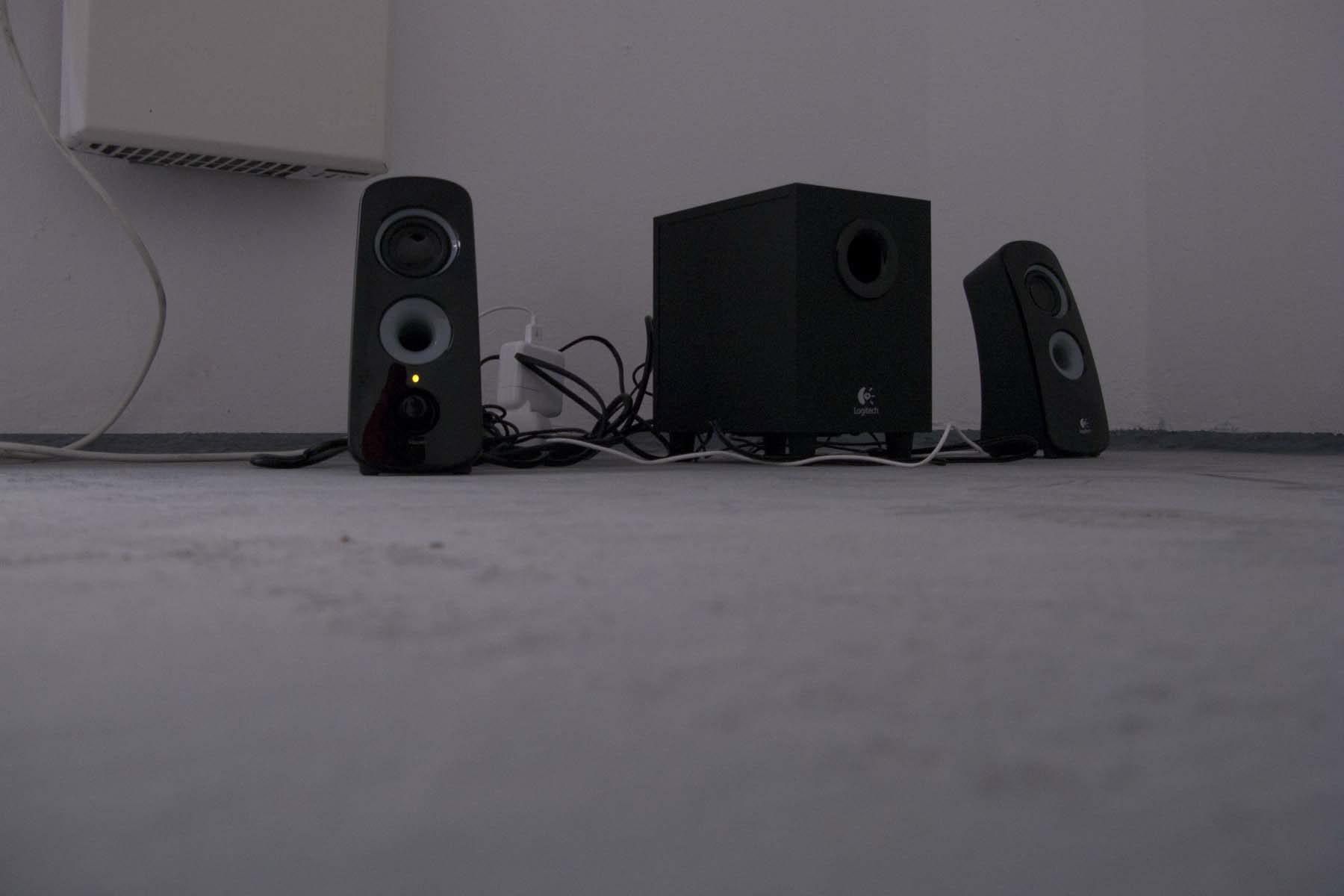 N. Cvijanović, Chronos devouring one of his children, 2010, loudspeaker, sound, 6'07'', loop